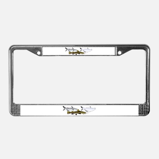 Three North American Catfish License Plate Frame