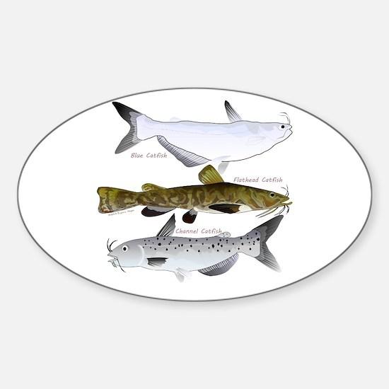 Three North American Catfish Decal