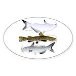 Three North American Catfish Sticker
