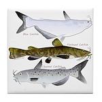 Three North American Catfish Tile Coaster
