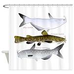 Three North American Catfish Shower Curtain