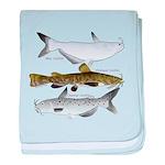 Three North American Catfish c baby blanket