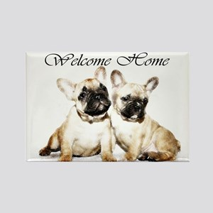 Welcome Home French Bulldogs Magnets