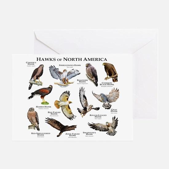 Hawks of North America Greeting Card