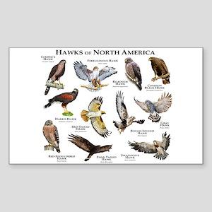 Hawks of North America Sticker (Rectangle)