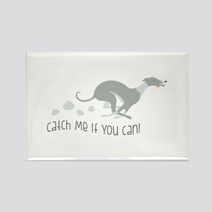 Catch Me If You Can! Magnets