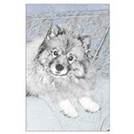 Keeshond (Beth) Large Poster