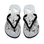 Keeshond (Beth) Flip Flops