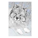 Keeshond (Beth) Postcards (Package of 8)