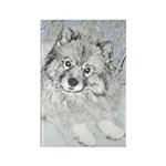 Keeshond (Beth) Rectangle Magnet (10 pack)