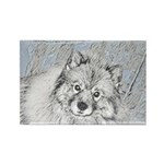 Keeshond (Beth) Rectangle Magnet (100 pack)