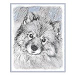 Keeshond (Beth) Small Poster