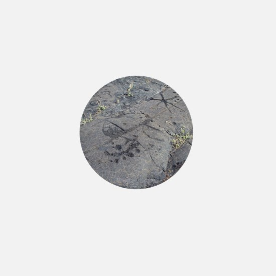 Volcanic Petroglyphs Mini Button