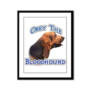 Bloodhound Obey Framed Panel Print