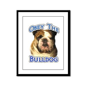 Bulldog Obey Framed Panel Print