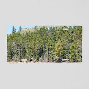 Boreal lake shoreline  Aluminum License Plate