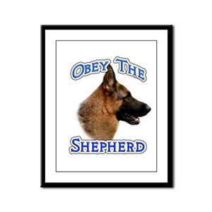 GSD Obey Framed Panel Print