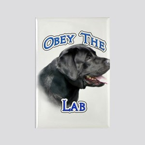 Lab Obey Rectangle Magnet