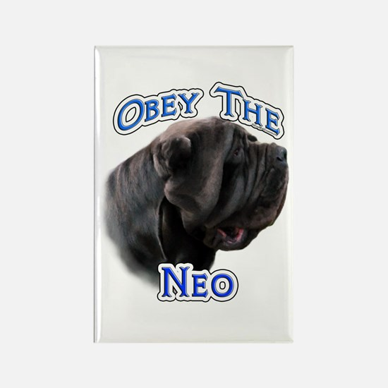 Neo Obey Rectangle Magnet