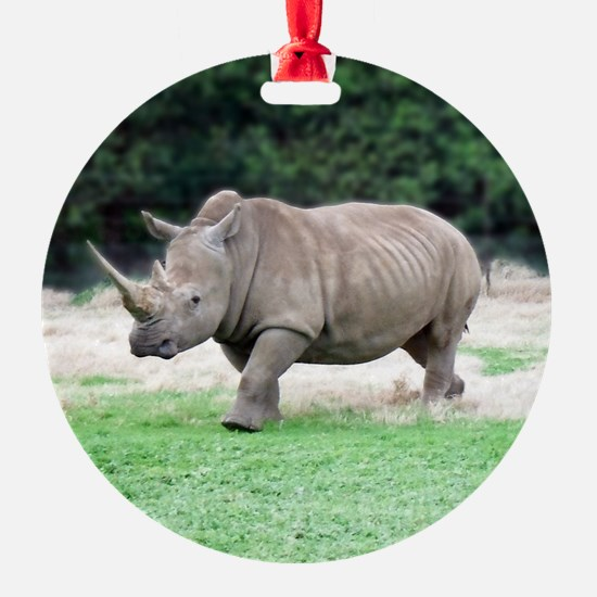 Rhinoceros with Huge Horn Ornament