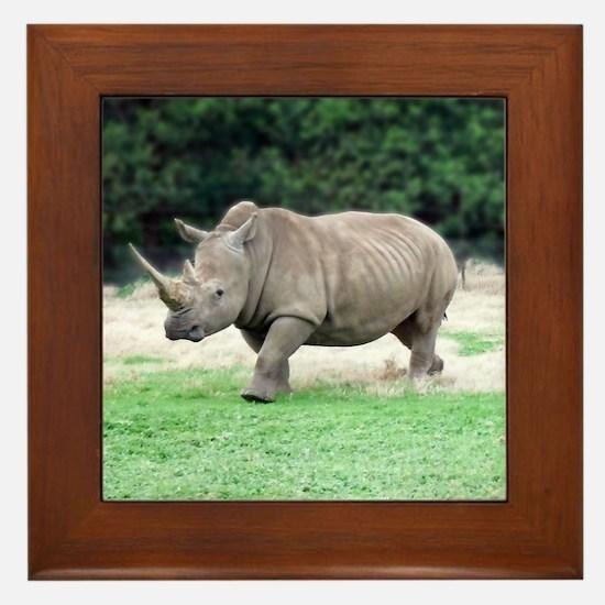 Rhinoceros with Huge Horn Framed Tile
