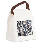 Asteroids Canvas Lunch Bag