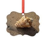 Conch Shell (Color) Ornament