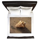 Conch Shell (Color) King Duvet