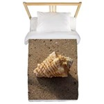 Conch Shell (Color) Twin Duvet