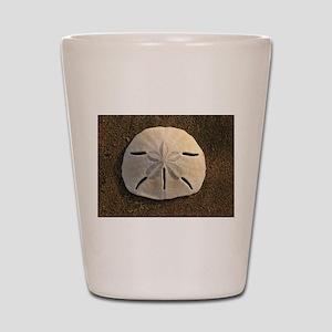 Sand Dollar Seashell Shot Glass