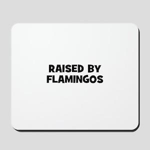 raised by flamingos Mousepad