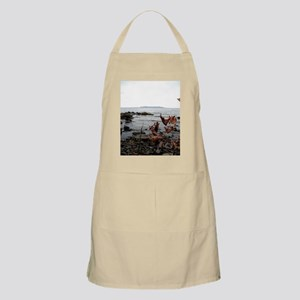 Sleeping giant Apron