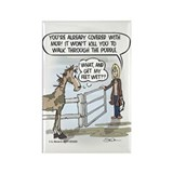 Equestrian Magnets
