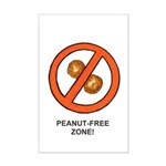 Peanut-Free Zone Small Poster