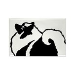 Keeshond Graphics Rectangle Magnet (10 pack)