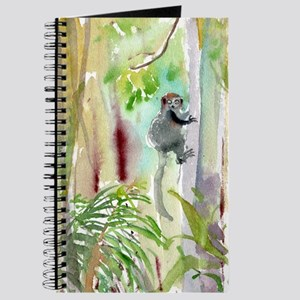 Mongoose lemur in the forest Journal