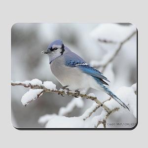 Blue Jay / Mdf GNU CCS-A Mousepad