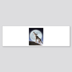 Howling at the moon Bumper Sticker