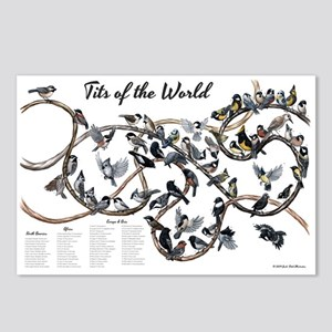 Tits of the World Postcards (Package of 8)