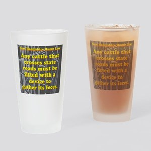 New Hampshire Dumb Law #4 Drinking Glass