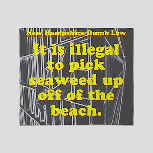 New Hampshire Dumb Law 003 Throw Blanket