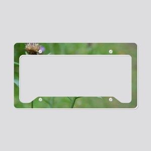 Scottish Thistle License Plate Holder