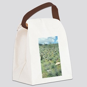Stepping Stones Desert Canvas Lunch Bag