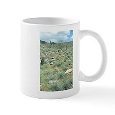 Stepping Stones Desert Mugs