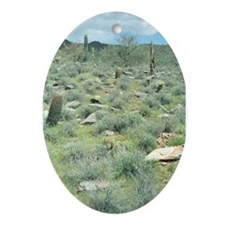 Stepping Stones Desert Ornament (Oval)
