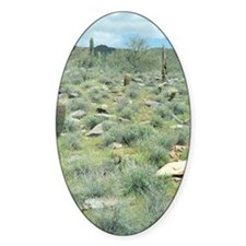 Stepping Stones Desert Sticker