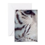 Disappearing Tigers Greeting Cards