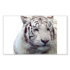 Disappearing Tigers Decal