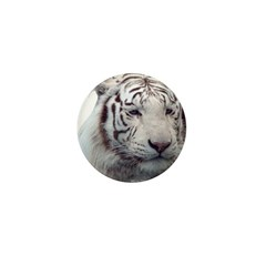Disappearing Tigers Mini Button