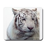 Disappearing Tigers Mousepad